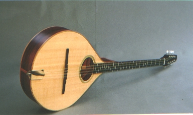 Flat Top Bouzouki in Spruce Ebony Tulipwood with Walnut Neck