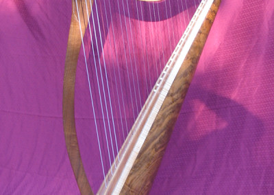 Donegal Harp